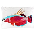 Spot-lined flasher wrasse Pillow Case