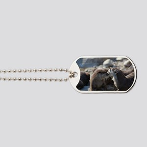 Cuddling River Otters Dog Tags