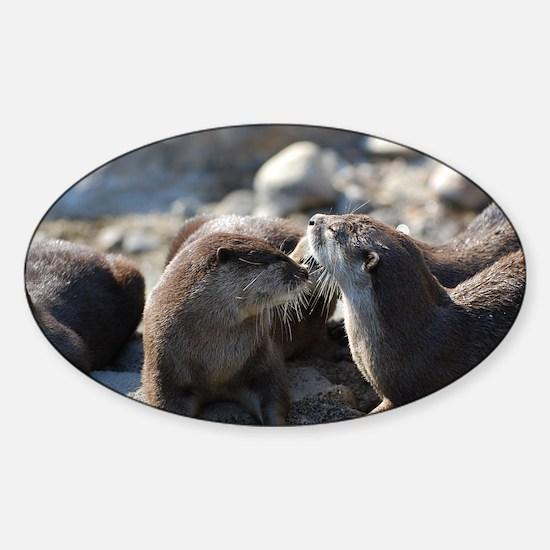 Cuddling River Otters Sticker (Oval)