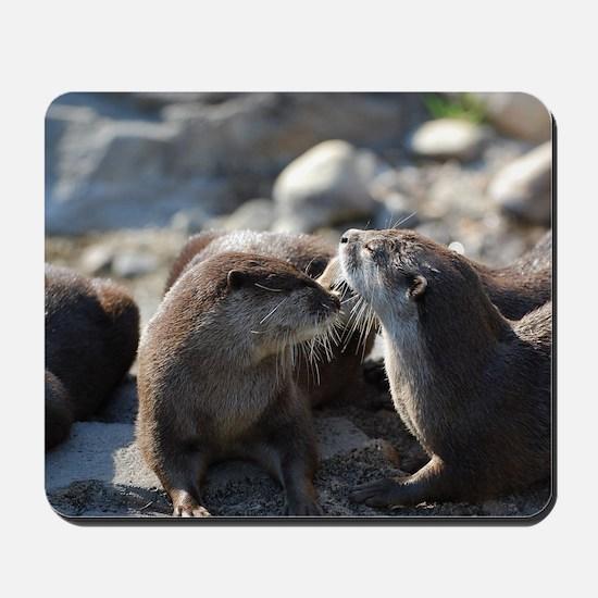 Cuddling River Otters Mousepad