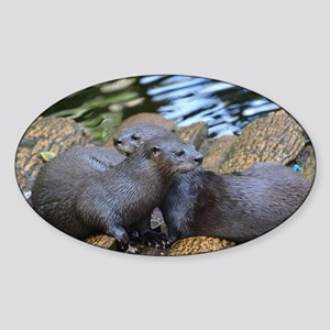 Pair of Cuddling River Otters Sticker (Oval)
