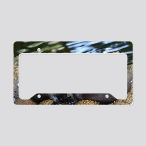 Pair of Cuddling River Otters License Plate Holder