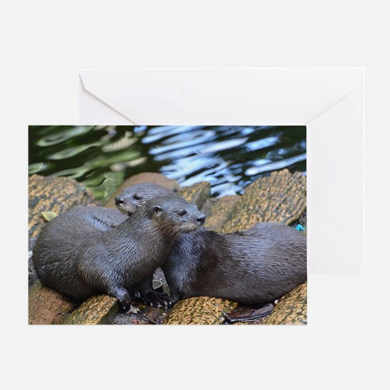 Pair of Cuddling River Otters Greeting Card