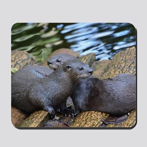 Pair of Cuddling River Otters Mousepad