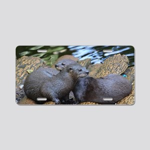 Pair of Cuddling River Otte Aluminum License Plate