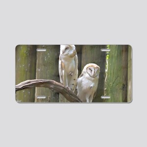 Pair of Barn Owls Aluminum License Plate