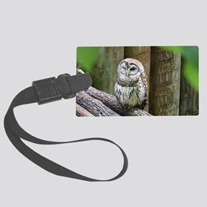 Cute Little Owl Large Luggage Tag