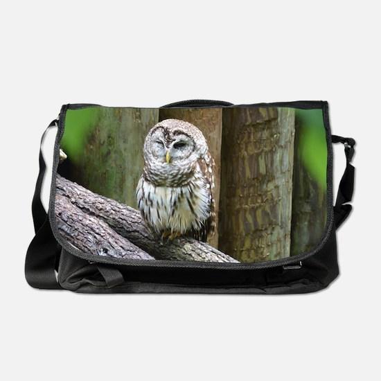 Cute Little Owl Messenger Bag