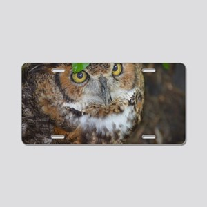 Owlish Owl Aluminum License Plate