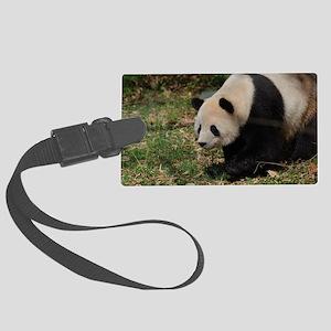Giant Panda Bear Meandering Alon Large Luggage Tag