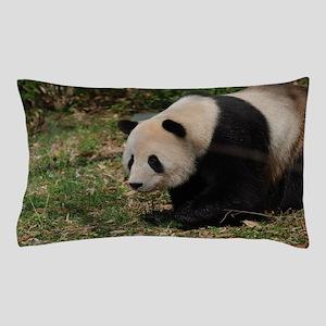 Giant Panda Bear Meandering Along Pillow Case