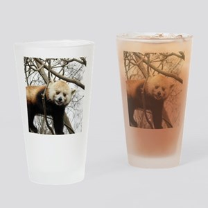 Red Panda Drinking Glass