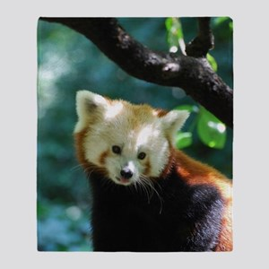 Sweet Red Panda Bear Throw Blanket