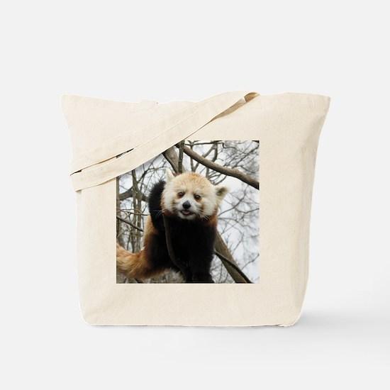 Funny Red Panda Tote Bag