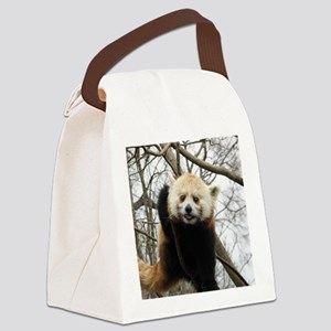 Funny Red Panda Canvas Lunch Bag
