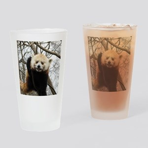 Funny Red Panda Drinking Glass