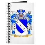 Flizot Journal