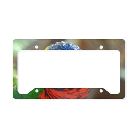 Colorful Lorikeet License Plate Holder