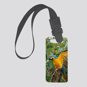 Pet Macaw Small Luggage Tag