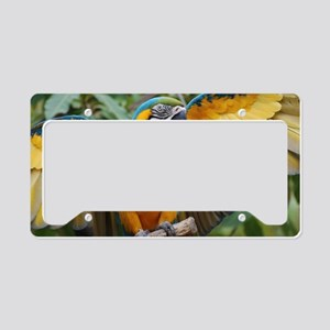 Macaw Wings License Plate Holder