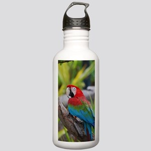 Hybrid Macaw Stainless Water Bottle 1.0L
