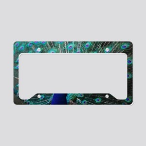 Peacock License Plate Holder