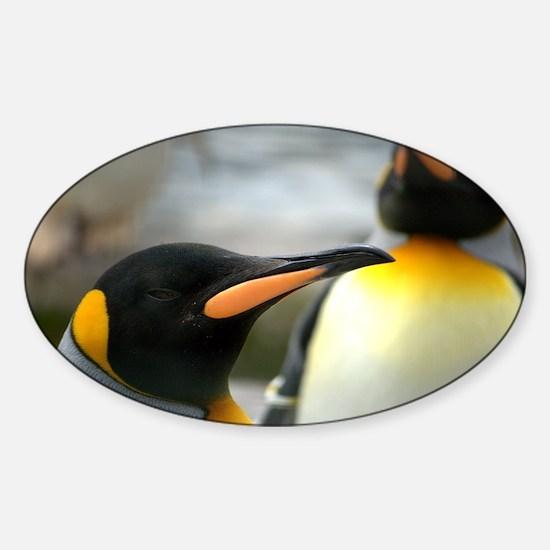 Long Beaked Emperor Penguin Sticker (Oval)