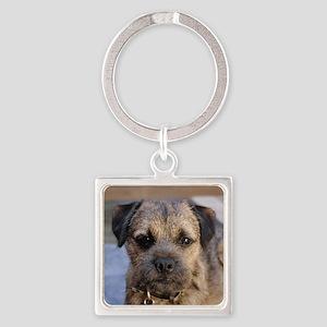 border terrier Keychains