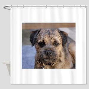 border terrier Shower Curtain