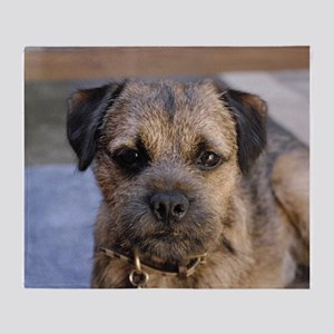 border terrier Throw Blanket