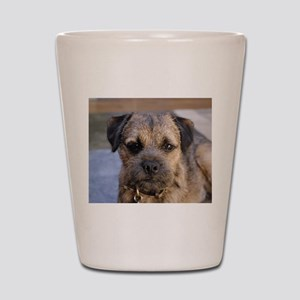 border terrier Shot Glass