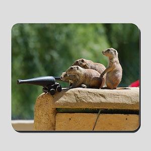 Prairie Dog Soldiers Mousepad