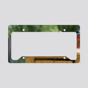 Prairie Dog Soldiers License Plate Holder