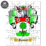 Flannery Puzzle