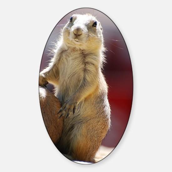 Adorable Prairie Dog Sticker (Oval)