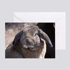 Lop Eared Rabbit Greeting Card
