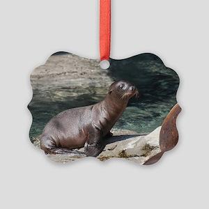 Sea Lion Pup Picture Ornament