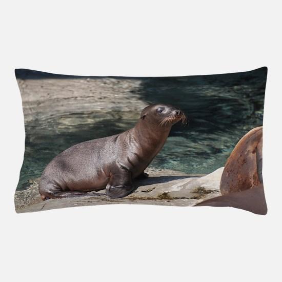 Sea Lion Pup Pillow Case