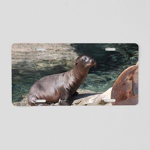 Sea Lion Pup Aluminum License Plate