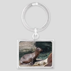 Sea Lion Pup Landscape Keychain