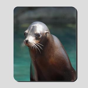 Adorable Sea Lion Mousepad