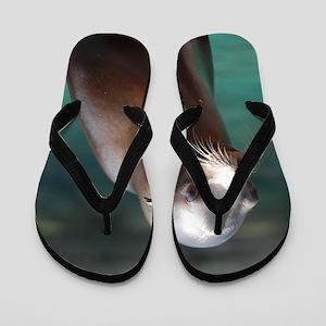Adorable Sea Lion Flip Flops