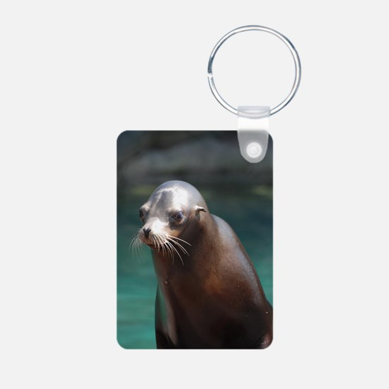 Adorable Sea Lion Keychains