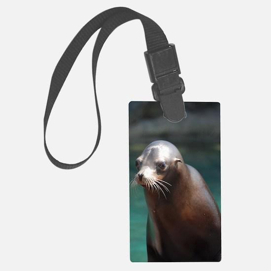 Adorable Sea Lion Luggage Tag
