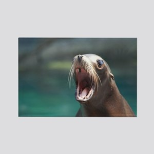 Sea Lion Chatting Rectangle Magnet