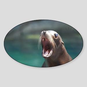 Sea Lion Chatting Sticker (Oval)