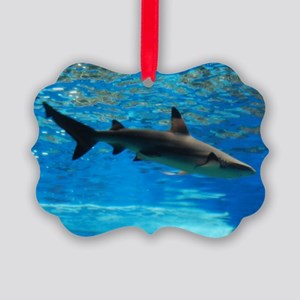 Black Tipped Shark Picture Ornament