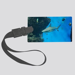 Swimming Black Tipped Shark Large Luggage Tag