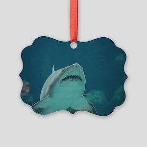 Shark Predator Picture Ornament