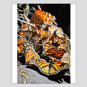 Monarch Butterflies 2 Posters